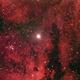 2012 Around Gamma Cygni Aut02 with Scopos TL805 + AstronomikCLS+550D,                                Rocco Parisi