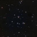 M44,                                Rino