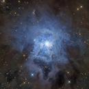 Core of Iris ( NGC 7023 ) in LHaRGB,                                Satwant Kumar