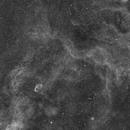 Crescent Nebula region,                                Alessio Pariani