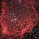 SH2-129 Flying Bat Nebula,                                Chief