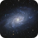 M33 with my new telescope,                                Howie Silleck