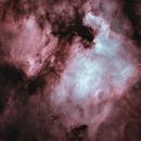 Starless in Cygnus,                                north.stargazer