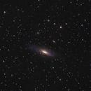 NGC 7331 - The Deer Lick Group,                                Evelyn Decker