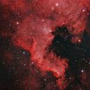 NGC 7000 10 sept 2015,                                ReneW
