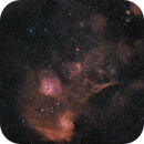 Flame and Tadpoles in Auriga - QHY163 - Rokinon 135mm - HSO,                                Eric Walden