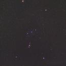Orion Wide Field,                                Rino