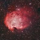 NGC 2174 Monkey Head Nebula #1,                                Molly Wakeling