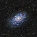 M33 - Triangulum Galaxy,                                Tim Hutchison