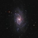 M33,                                Roland Horvath