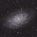 M33 / NGC 598,                                Fabio Mirra