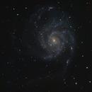 M101 Galaxy,                                John Willis