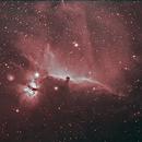 Horsehead Nebula (Barnard 33) and Flame Nebula (NGC 2024),                                Newton Cesar Florencio