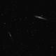 NGC4631 & 4656,                                Daniel.P