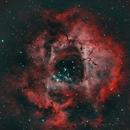 Rosette Nebula,                                George C. Lutch