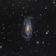 NGC 5033,                                Toshiya Arai