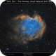 NGC2174 - SH2 252 The Monkey Head Nebula SHO 50% Green,                                Brice Blanc