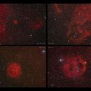 Some Sharpless nebulae caught this spring,                                Göran Nilsson