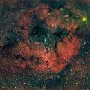 IC 1396, OSC + Ha,                                Stephen Garretson
