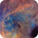 IC 1396 Bok globules (Version 2),                                Gary Lopez