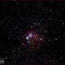 NGC 2264 Cone Nebula and Christmas Tree Cluster,                                Tom Wildoner