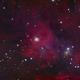 NGC 1999 in Orion,                                Jon Talbot