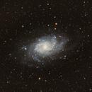 The Triangulum Galaxy, M33,                                Loran Hughes