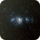 M42 - Orion,                                Niall King