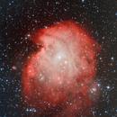 NGC 2174  Monkey Head,                                Steve BENZ