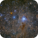 Iris nebula and Ghost nebula,                                Toshiya Arai