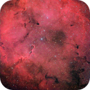 La nebulosa Proboscide d'elefante ,                                gagba