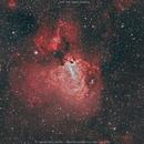 M17 The Swan Nebula,                                Salvatore Cozza