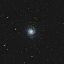 M74,                                Kevin Parker
