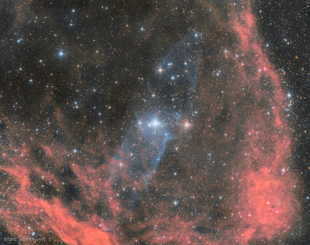SH2-129 & OU4 -  The Squid and Bat Nebula,                                Marc Verhoeven