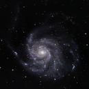 """M101 """"The Pinwheel Galaxy"""",                                damien.bissonnette"""