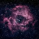 NGC2244 Rosette Nebula,                                Maciej Pliszkiewicz