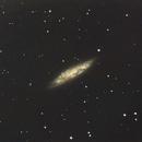 Messier M108,                                David Newbury