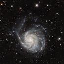 M101 Wide Field,                                Riedl Rudolf