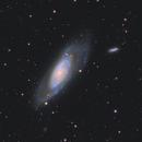 M106 - Galaxy in Canes Venatici,                                Andreas Reifke