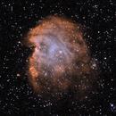 NGC2174: The Monkey Head Nebula Bicolour (2019),                                Daniel Tackley