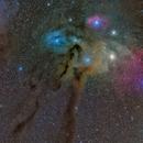 Rho Ophiuchi Nebula Mosaic,                                Miles Zhou