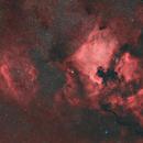 Sh2-119 & NGC 7000,                                gabriel