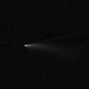 Cometa Neowise,                                Giorgio Viavattene