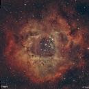 Rosette Nebula #5 (Duo-band),                                Molly Wakeling