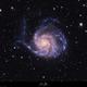 M101, my second light,                                Fabrizio Sellone