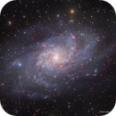 M33 with and without Olll,                                Eric Coles (coles44)