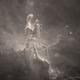 M16 Core in Starless SII,                                John Ebersole