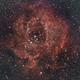 Rosette Nebula,                                Shawn Harvey