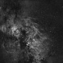 Cygnus @ 35mm,                                Tristan Campbell