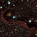 IC 1396 Elephant,                                Günther Eder